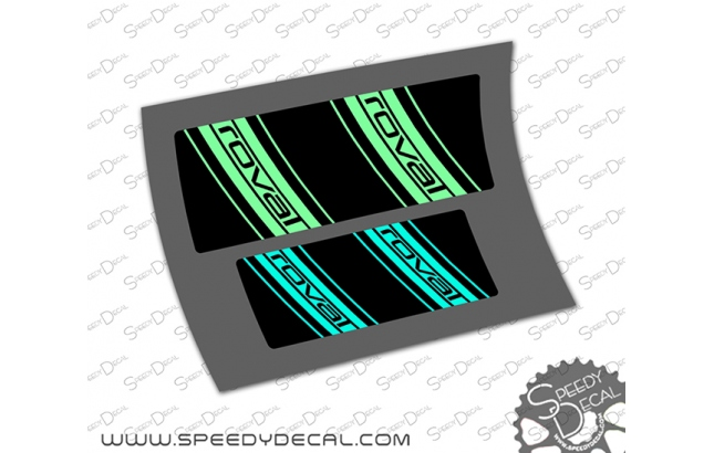 Specialized Kenevo - adesivi per mozzi