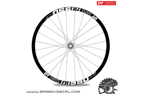 DT Swiss FR950 Classic - adesivi per ruote