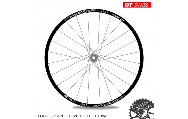 DT Swiss H1900 Spline - adesivi per ruote