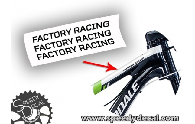Cannondale Factory Racing - adesivi per telaio Flash Scalpel...
