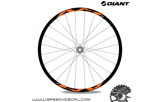 Giant AM+ - adesivi per ruote