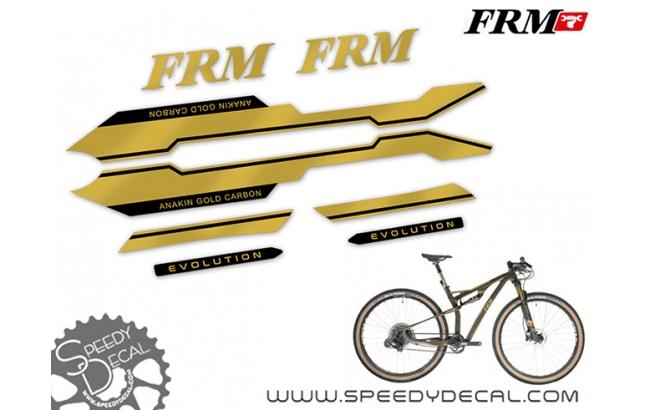 FRM Anakin Gold Carbon Evolution 2020 - kit adesivi per telaio