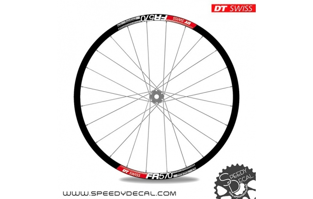 DT Swiss FR 570 - adesivi per ruote